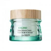 Крем-гель увлажняющий для жирной кожи the SAEM Iceland